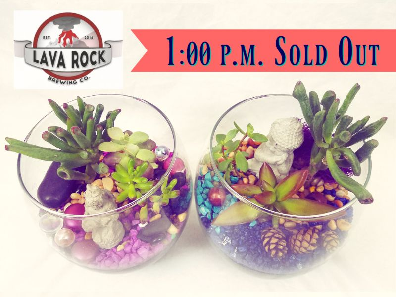 1:00 pm - SOLD OUT - Make a Terrarium at Lava Rock Brewing