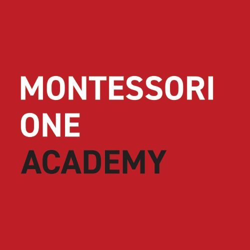 The Montessori Parent - Workshops for Life