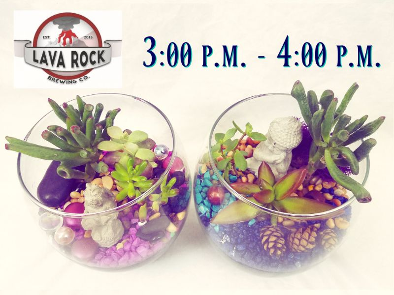 3:00 pm - SOLD OUT - Make a Terrarium at Lava Rock Brewing - 3 p.m.