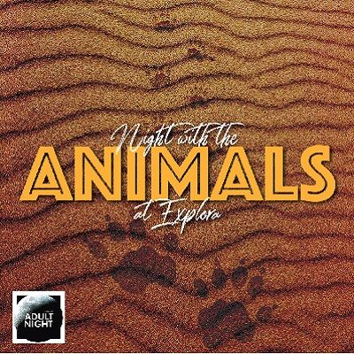 Night with the Animals - Adult Night for ages 18+ at Explora!