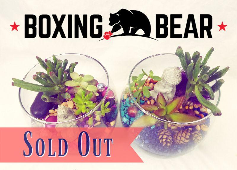 Make a Sand Art Terrarium at Boxing Bear Brewing