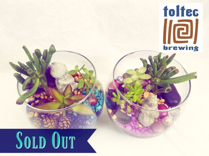 Make Terrariums at Toltec Brewing