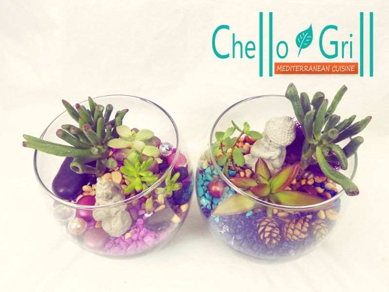 Make Terrariums at Chello Grill