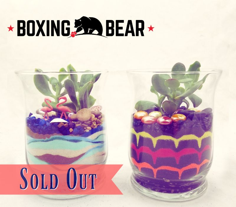 Sand Art & Succulents at Boxing Bear Brewing