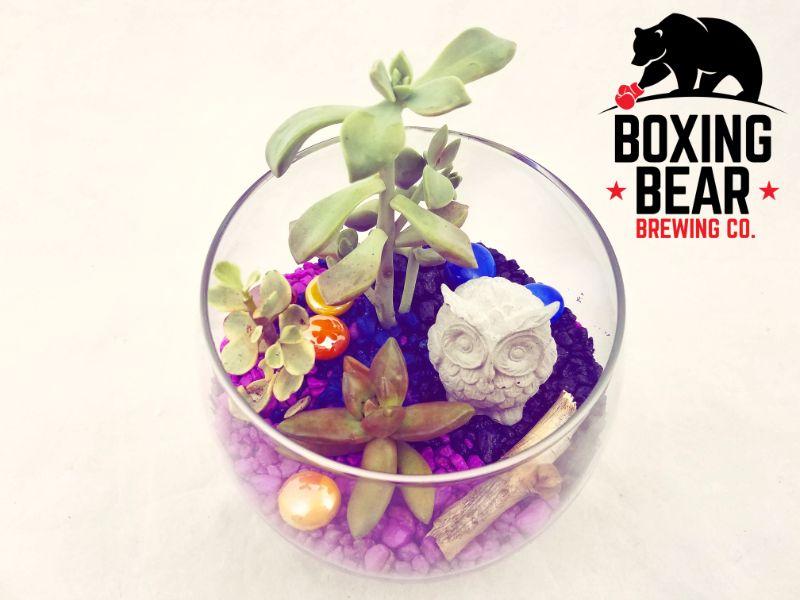 Make Terrariums at Boxing Bear