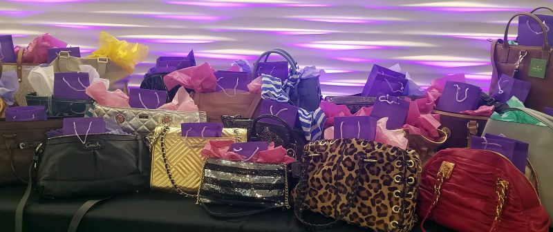 DVRC Power of the Purse Fundraiser- Purses with a Purpose