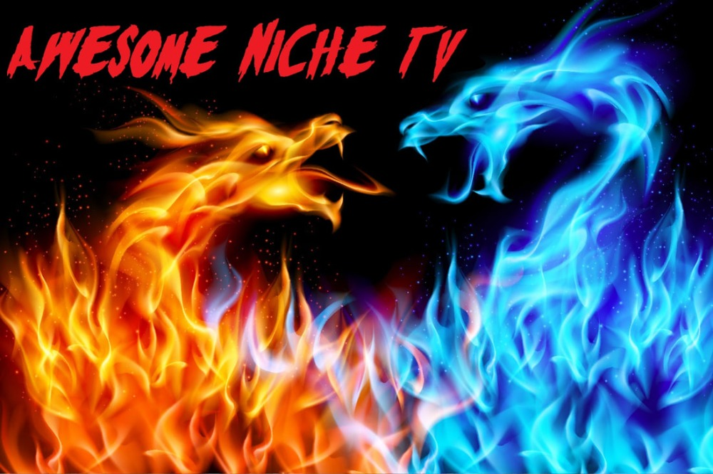 Awesome Niche TV