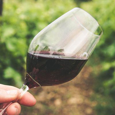 Wine Class: Pinot Noir