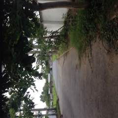 Bán đất thổ MT Nguyễn Văn Thời 2,5tr/m TL