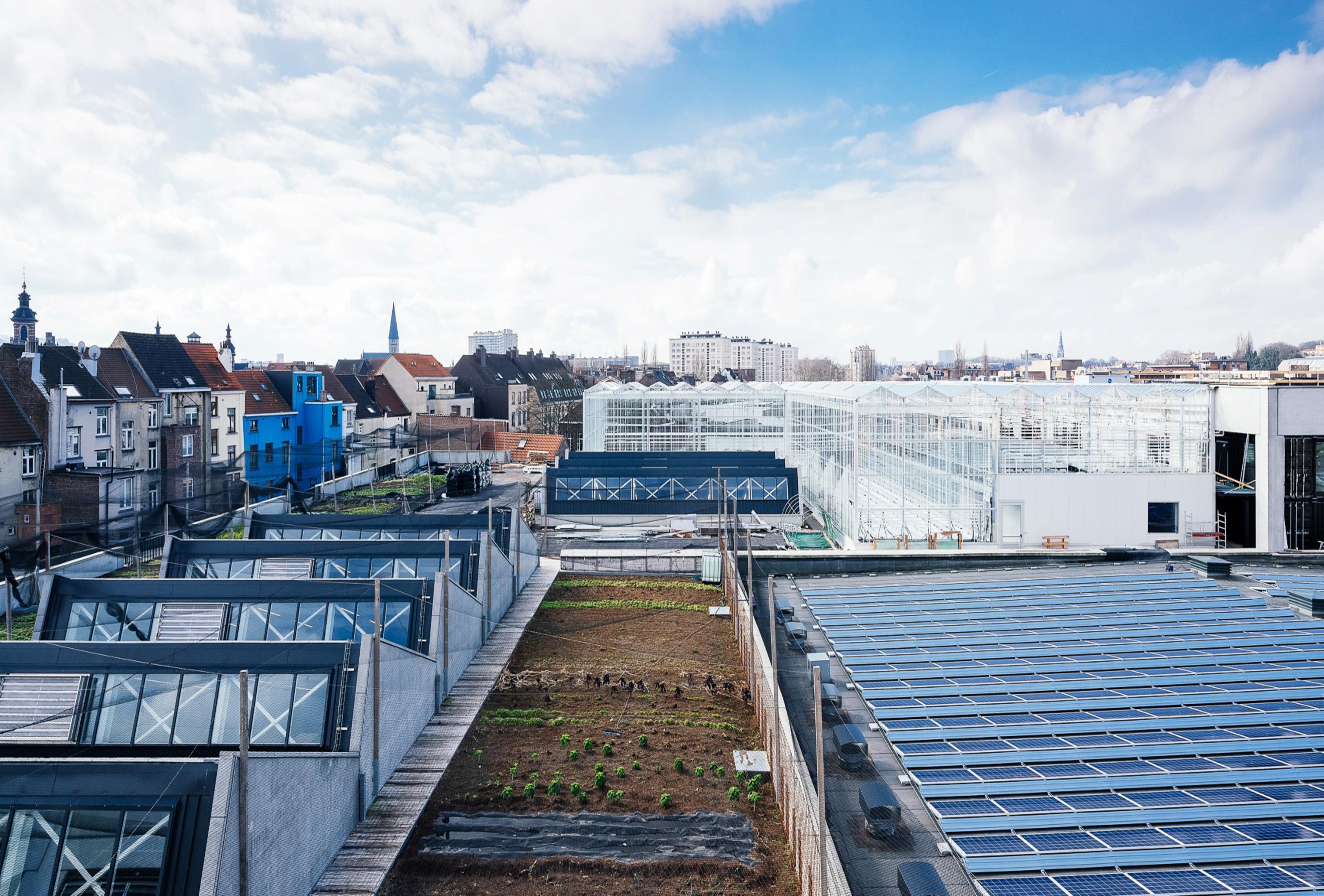 Serres de la ferme urbaine - Anderlecht -Belgique -  Derbigum