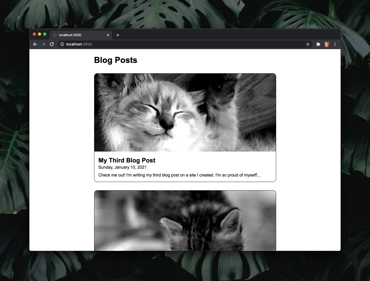 Window showing the home page and list of blog posts.