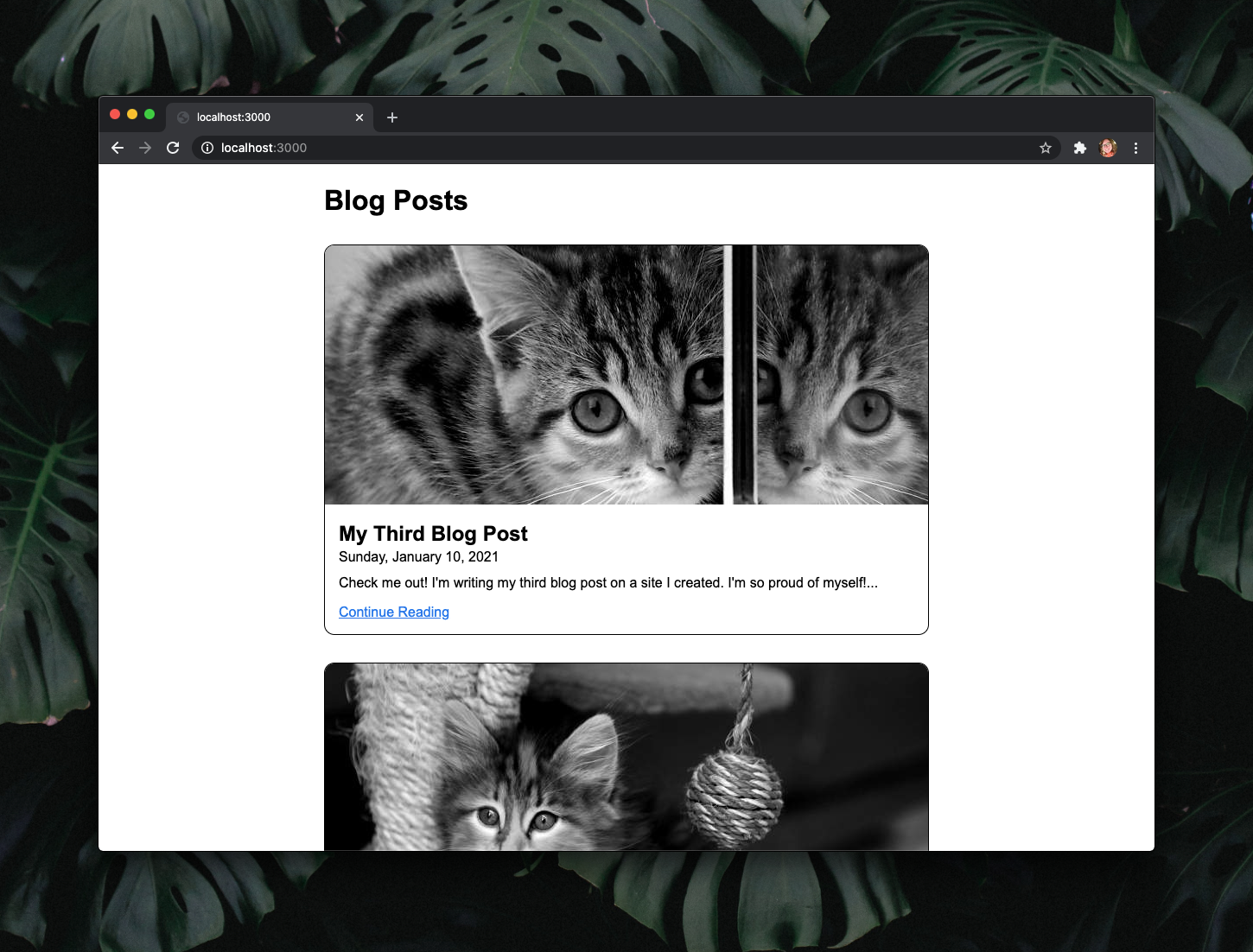 """Web page listing blog posts. Each has a black and white image of a random cat, a title in bold text, a date, excerpt, and blue link that reads """"Continue Reading""""."""