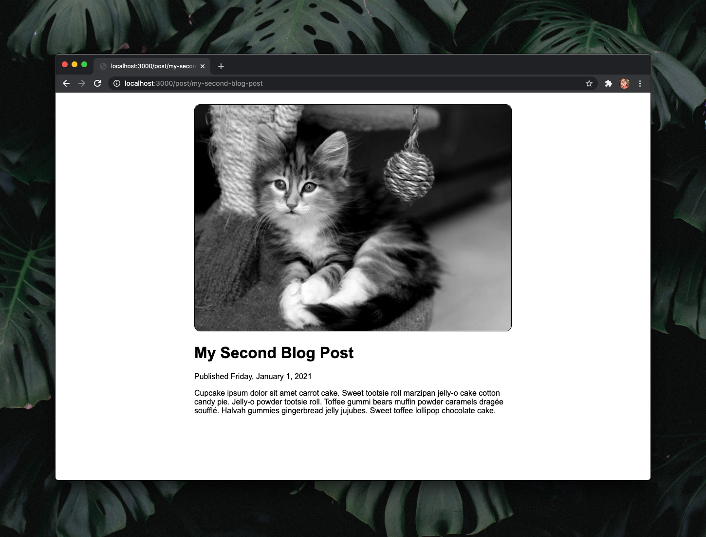 Webpage showing a black and white image of a random cat from PlaceKitten.com, the blog post title in bold font, the publish date, and the post content.
