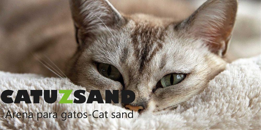 catuzsand-arena-para-gatos