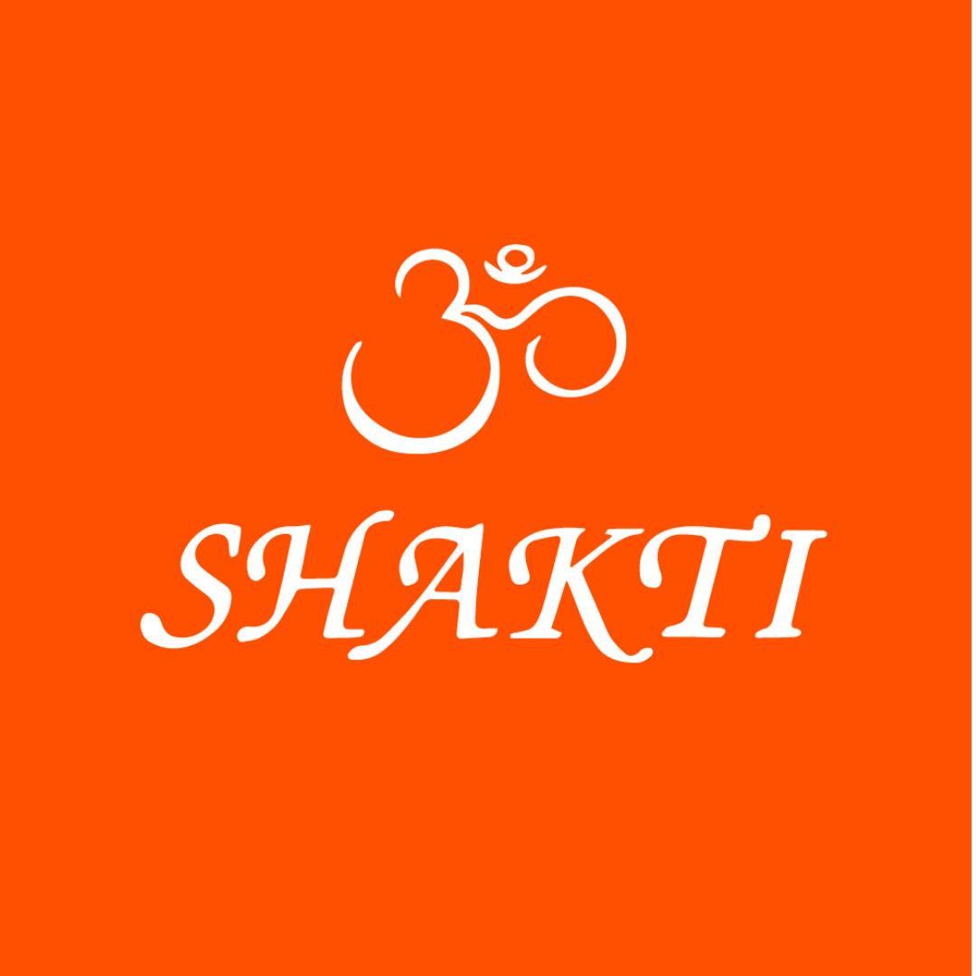 Logo ShaktiMat GmbH