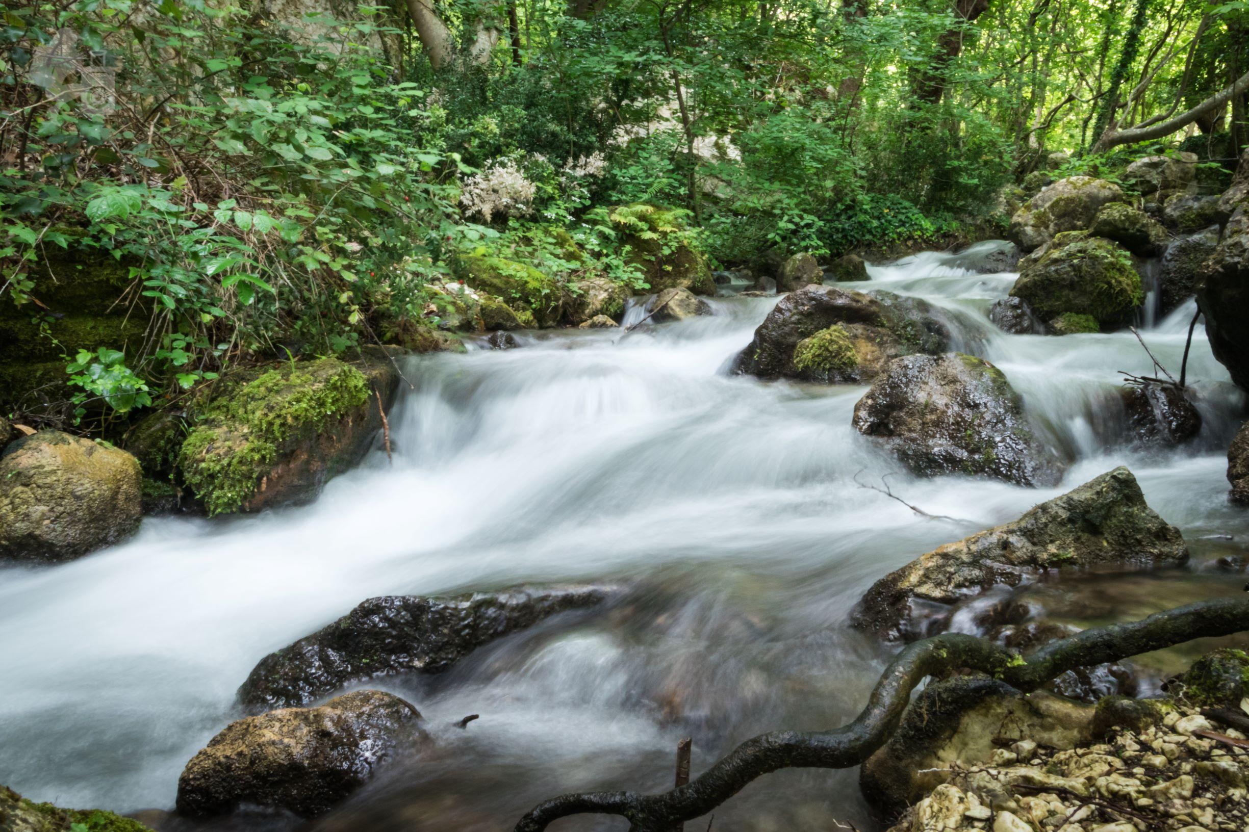 GOLE DEL SAGITTARIO: MERAVIGLIOSA OASI WWF