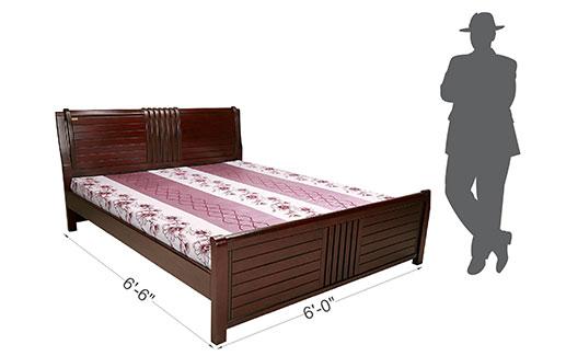 Daffodil Bed-6 Feet