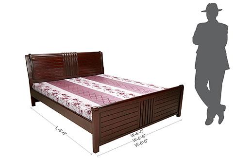 Daffodil Bed-5 Feet 6 Inch