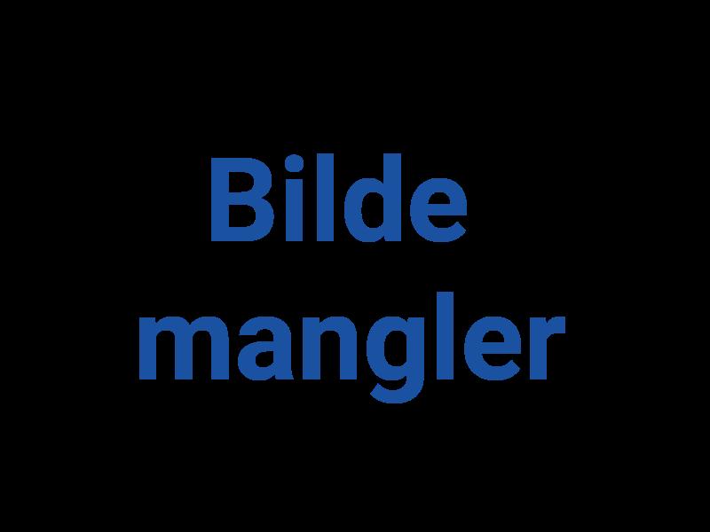 Bilde 1 av  Bjarkøy Bil & Mek