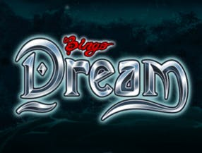 Bingo Dream slot game