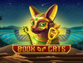 Book of Cats slot game