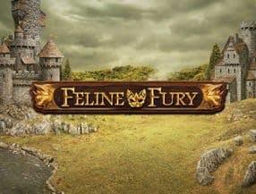 Feline Fury