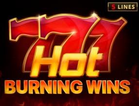 Hot Burning Wins slot game