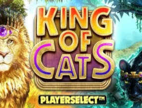 King of Cats slot game