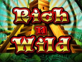 Rich n Wild slot game