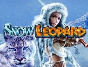 Snow Leopard slot game