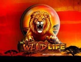 The Wild Life slot game