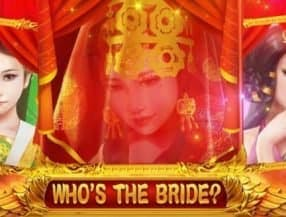 Who's the Bride slot game