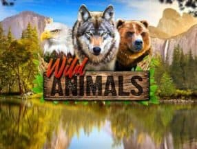 Wild Animals slot game