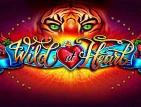 Wild at Heart slot game
