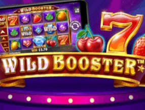Wild Booster slot game