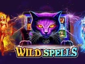 Wild Spells slot game