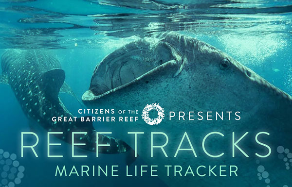 Reef Tracks: marine life tracker