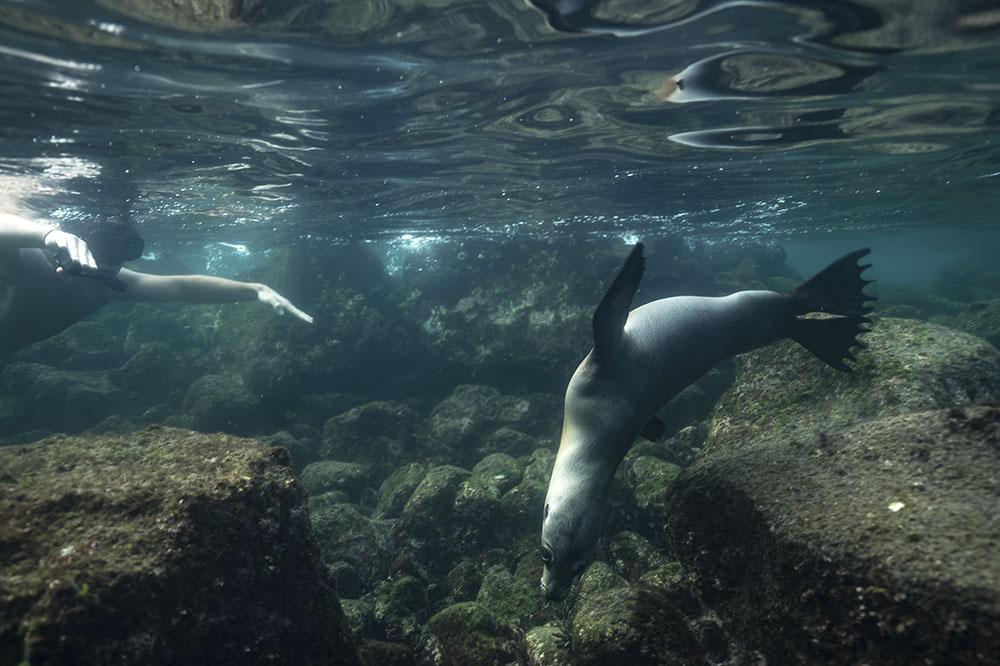 Cerro embrujado - Islas Galápagos