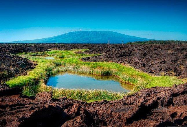 Punta moreno - Islas Galápagos