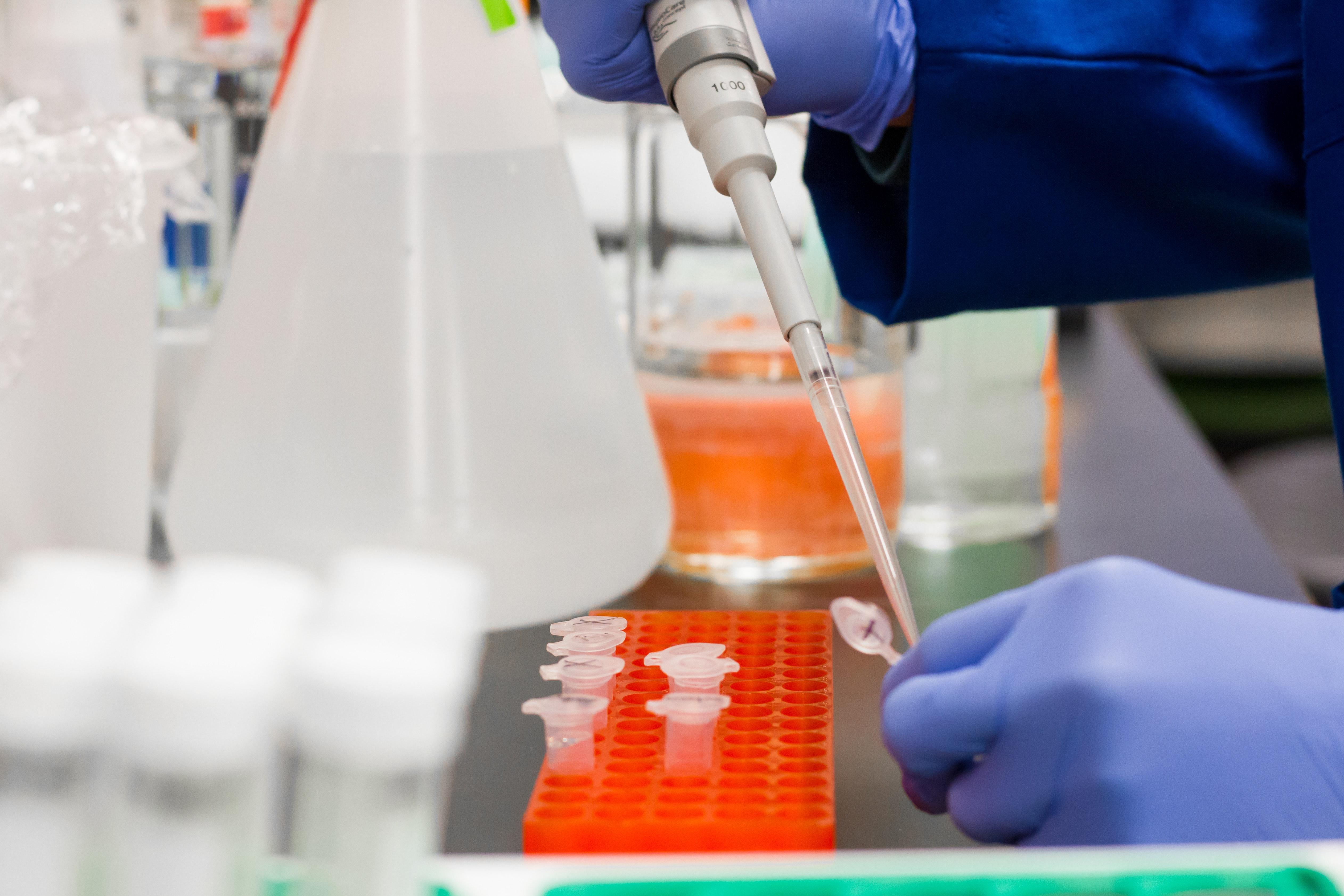 La revolución de las tijeras de ADN
