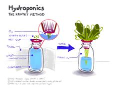 Kratky Jar illustration by Tricia Mendoza