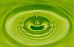 A water drop in green water