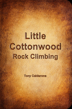 Little Cottonwood Rock Climbing cover