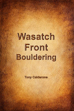 Wasatch Front Bouldering cover