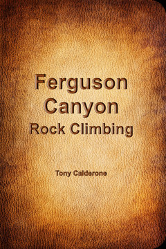 Ferguson Canyon Rock Climbing cover