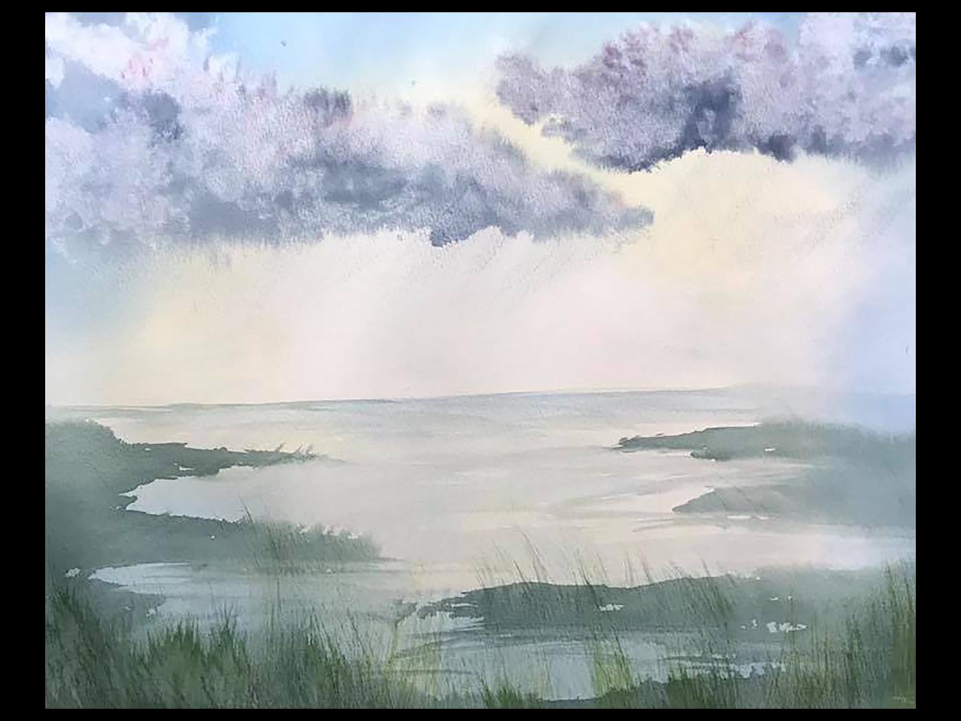 Marsh Rain