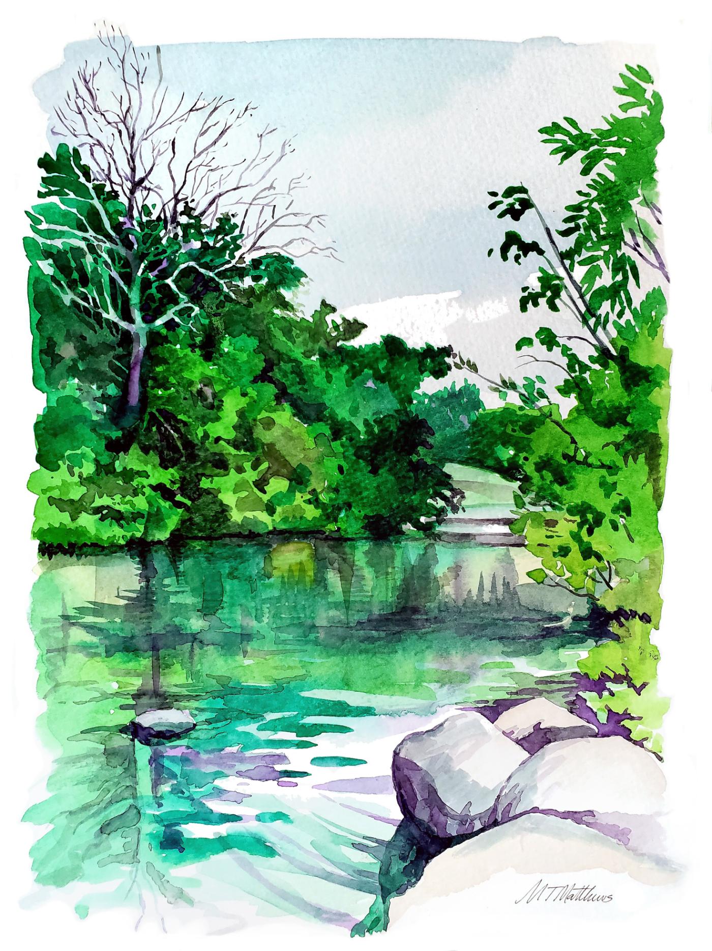 Barton Springs Pool, Austin