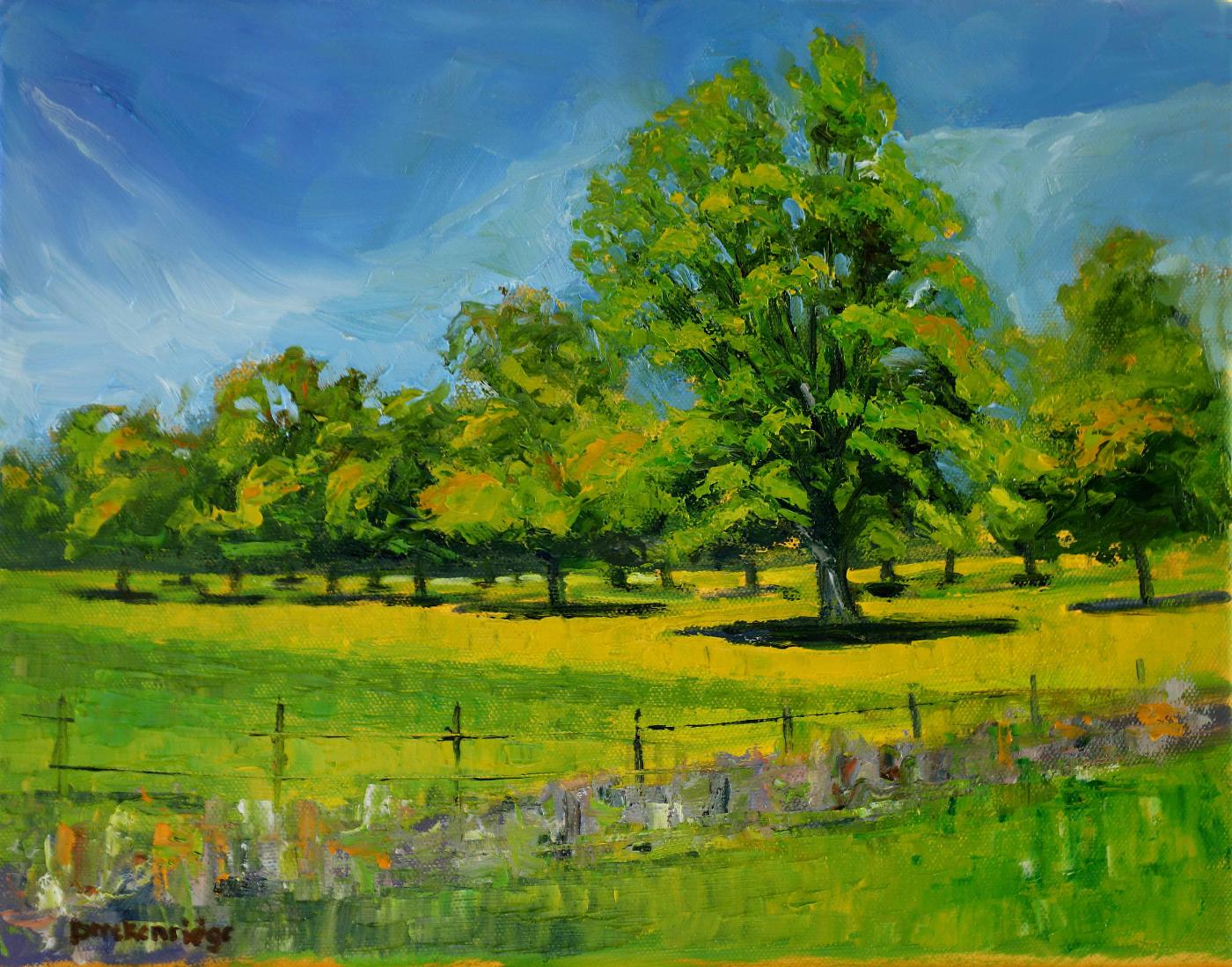 Spring Pecan Orchard