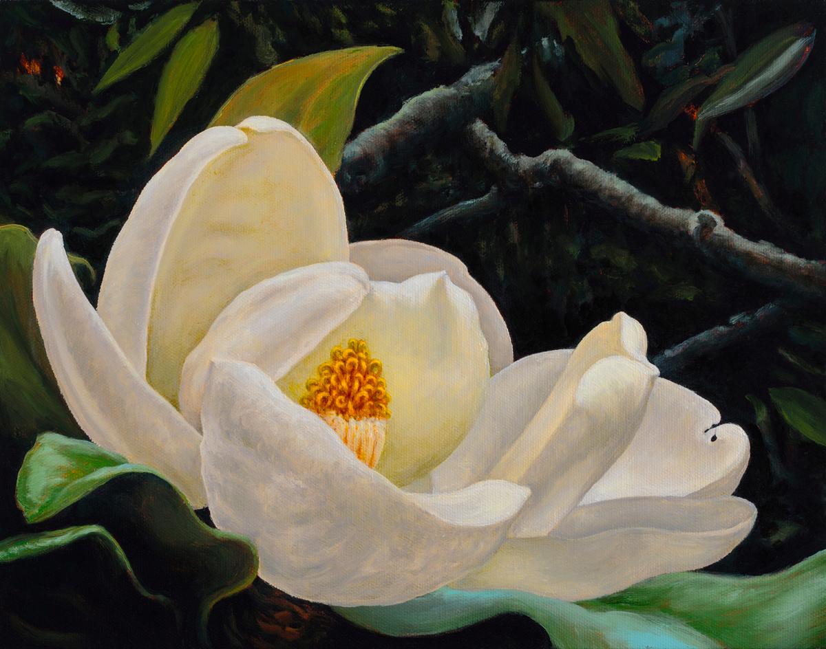 Magnolia No. 6
