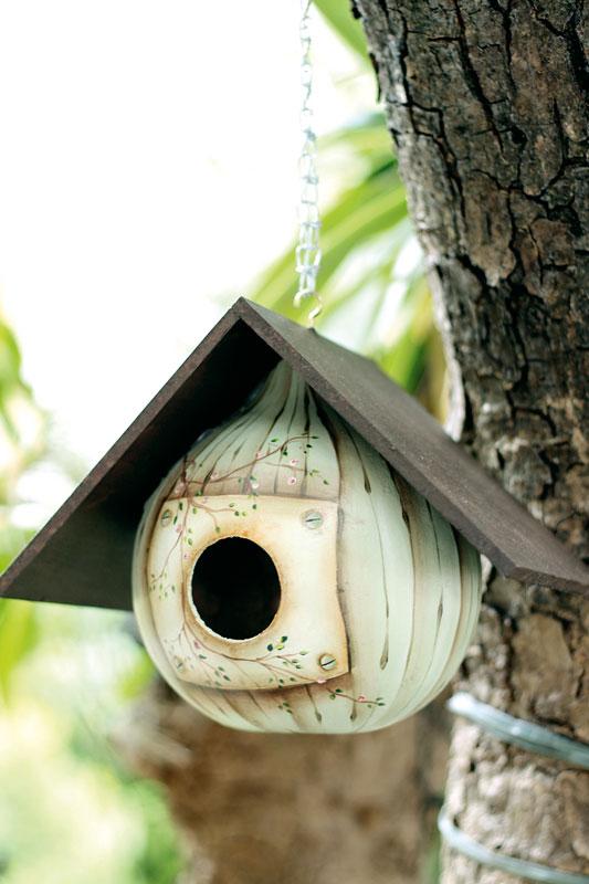 Saiba como fazer uma casa de passarinhos